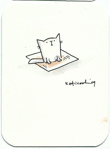Cat on a Cracker